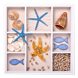 Premiumposter  Mussels in a set box - Elena Schweitzer