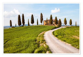 Premiumposter Farmhouse with cypresses in Tuscany