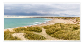 Premiumposter Beach in the national Park Thy
