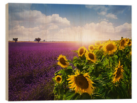 Trätavla  Lavender and sunflowers fields , Provence - Elena Schweitzer