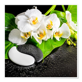 Premiumposter  Spa arrangement with white orchid