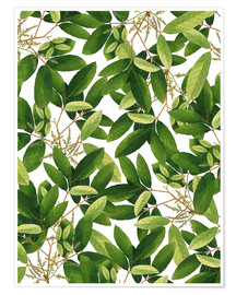 Premiumposter Greenery