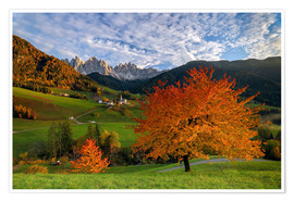 Premiumposter Funes Valley in autumn, Dolomites, South Tyrol, Italy