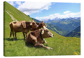 Canvastavla  Cows relax on the mountain