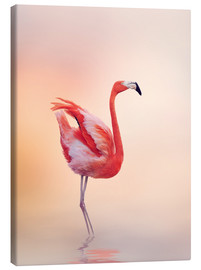 Canvastavla  Flamingo Feeling