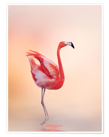 Premiumposter  Flamingo Feeling