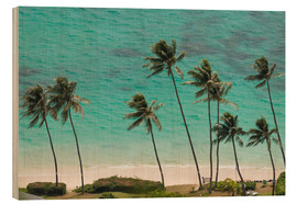 Trätavla  Palm Trees in front of the turquoise Ocean - Markus Ulrich