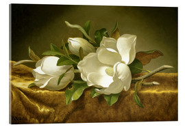 Akrylglastavla  Magnolias on Gold Velvet Cloth - Martin Johnson Heade