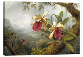Canvastavla  Orchids and Hummingbird - Martin Johnson Heade