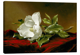 Canvastavla  Magnolia Grandiflora - Martin Johnson Heade