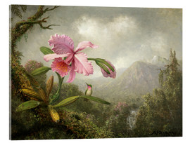 Akrylglastavla  Orchid and Hummingbird - Martin Johnson Heade