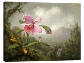 Canvastavla  Orchid and Hummingbird - Martin Johnson Heade