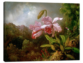 Canvastavla  Orchids in a Jungle - Martin Johnson Heade