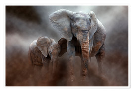 Premiumposter  Elephant with baby - Peter Roder