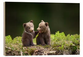 Trätavla  Two young brown bears