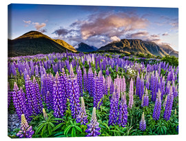 Canvastavla  Lupines at Arthur's Pas