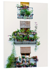 PVC-tavla  Facade with balconies full of flowers in Valencia