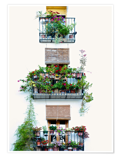 Premiumposter Facade with balconies full of flowers in Valencia