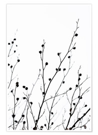Poster  Winter Silhouettes 2 - Mareike Böhmer Photography