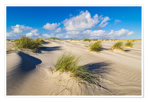 Premiumposter Landscape with dunes on the island Amrum