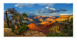 Premiumposter  Grand Canyon Idyll - Michael Rucker