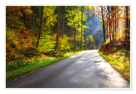 Premiumposter Road through autumn forest