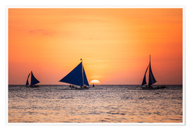 Premiumposter Sailboats in the sunset