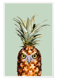 Premiumposter  Pineapple Owl - Jonas Loose