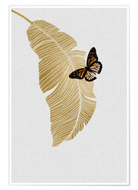 Poster  Butterfly & Palm - Orara Studio