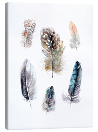 Canvastavla  Feathers collection - Verbrugge Watercolor