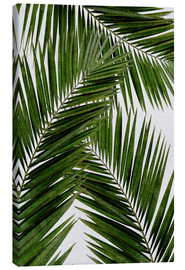 Canvastavla  Palm leaf III - Orara Studio