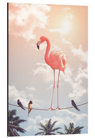 Aluminiumtavla  Flamingo and Friends - Jonas Loose