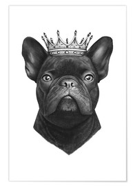 Premiumposter  The French Bulldog king - Valeriya Korenkova