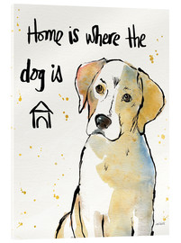 Akrylglastavla  Home is where the dog is - Anne Tavoletti