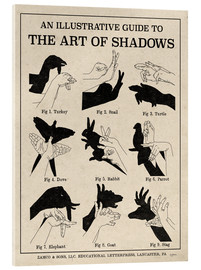 Akrylglastavla  The Art of Shadow Play X - Mary Urban