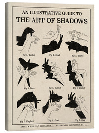 Canvastavla  The Art of Shadows X - Mary Urban