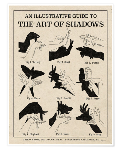 Premium poster The Art of Shadows X