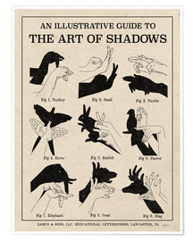Premiumposter  The Art of Shadows X - Mary Urban