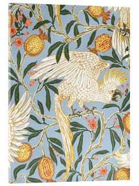 Akrylglastavla  Cockatoo and Pomegranate - Walter Crane