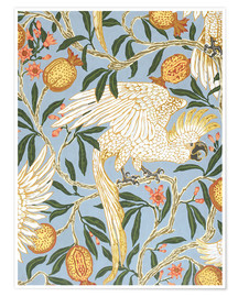 Premiumposter  Cockatoo and Pomegranate - Walter Crane