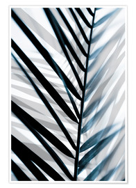 Premiumposter Palm Leaves 18