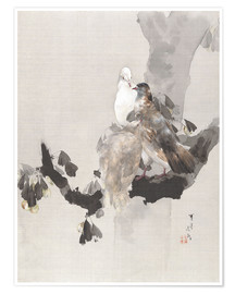 Premiumposter  Pigeons in a Tree - Watanabe Seitei