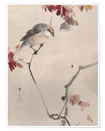 Premiumposter  Bird on Branch Watching Spider - Watanabe Seitei