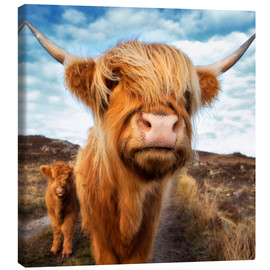 Canvastavla  Highland cattle with calf - Westend61