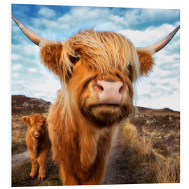 PVC-tavla  Highland cattle with calf - Westend61
