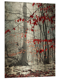 PVC-tavla  Winter forest with last leaves - Westend61