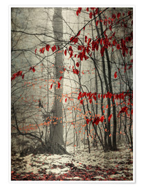 Premiumposter Winter forest with last leaves