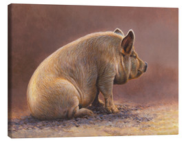 Canvastavla  Pig in the wallow
