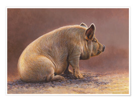 Premiumposter  Pig in the wallow