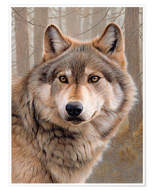 Premiumposter  North American Wolf - Ikon Images
